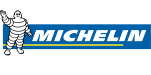 michelin Price in India